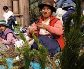 Santurantikuy Christmas markets in Cusco Peru
