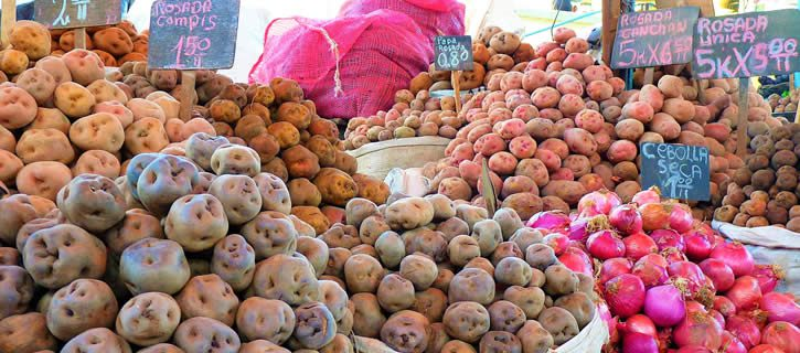 potatoes-peru-31-fun-facts