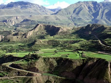 Colca Canyon in Arequipa, Peru