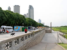Buenos Aires History: Reserva ecologica Costanera Sur