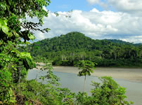 Learn Spanish in Tambopata